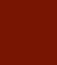 Sustraiak eta kimuak – Raíces y brotes